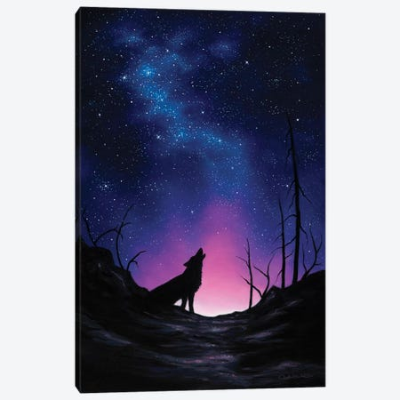 Starry Nights Canvas Print #CHB57} by Chuck Black Canvas Wall Art