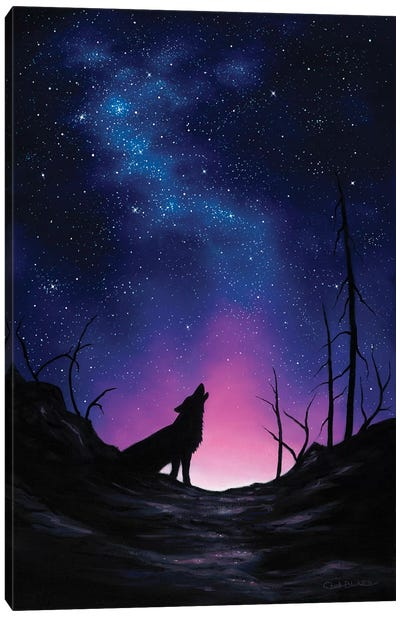 Starry Nights Canvas Art Print