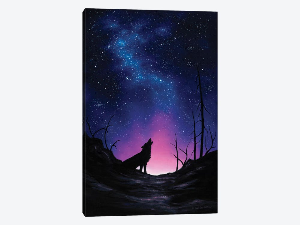 Starry Nights by Chuck Black 1-piece Canvas Art Print