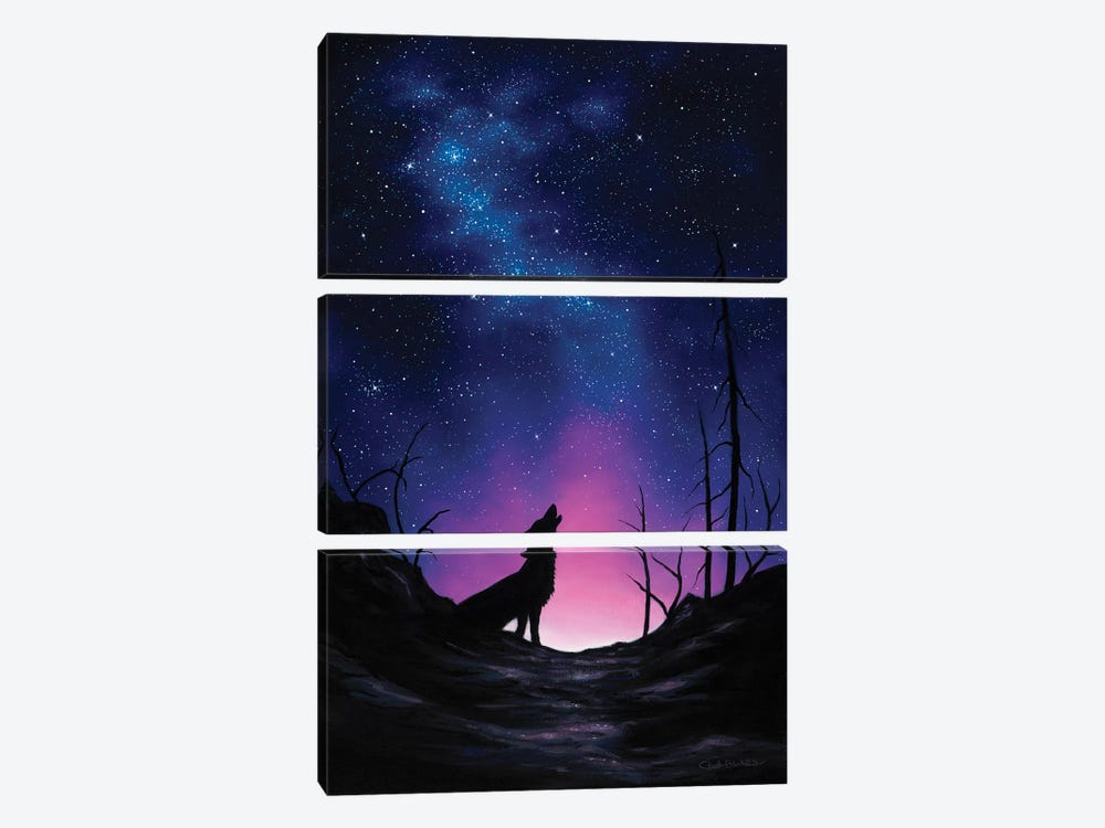 Starry Nights by Chuck Black 3-piece Canvas Art Print