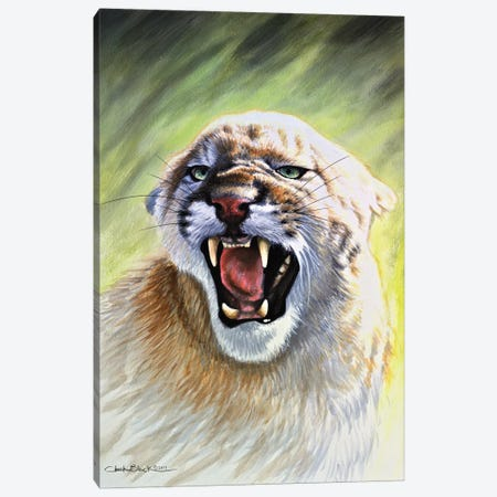 The Devil Within 3-Piece Canvas #CHB61} by Chuck Black Canvas Artwork