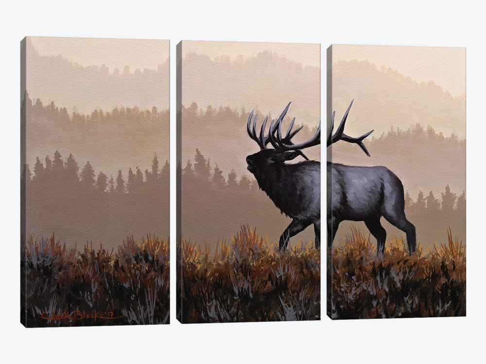 The Golden Hour by Chuck Black 3-piece Canvas Artwork