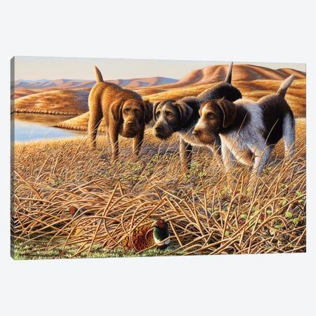 The Perfect Trio Canvas Print #CHB70} by Chuck Black Canvas Art Print