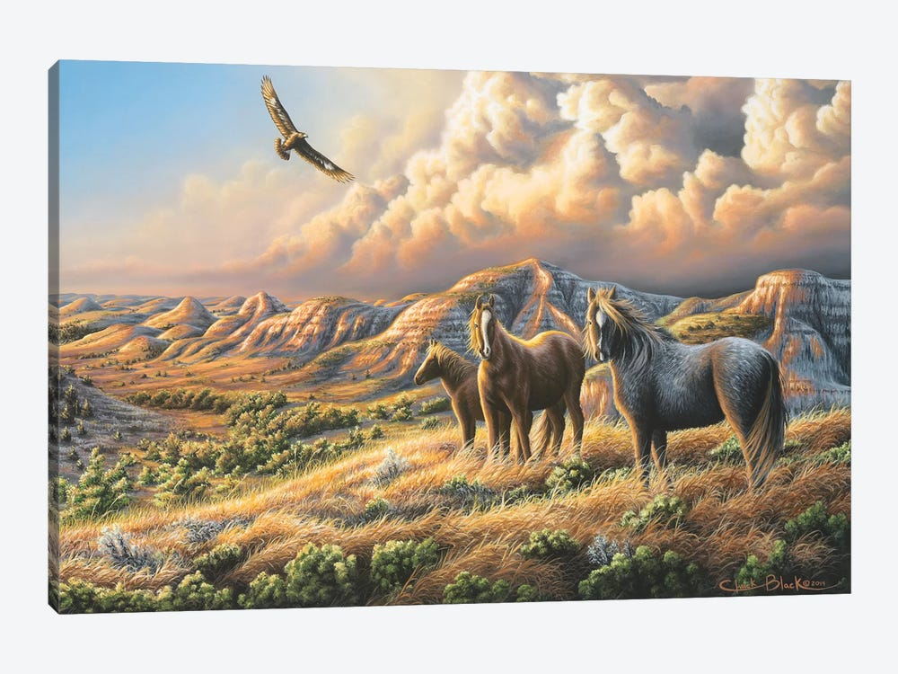 Under Wild Skies by Chuck Black 1-piece Canvas Wall Art