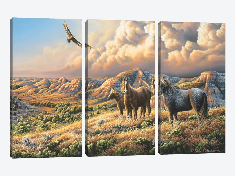 Under Wild Skies by Chuck Black 3-piece Canvas Artwork