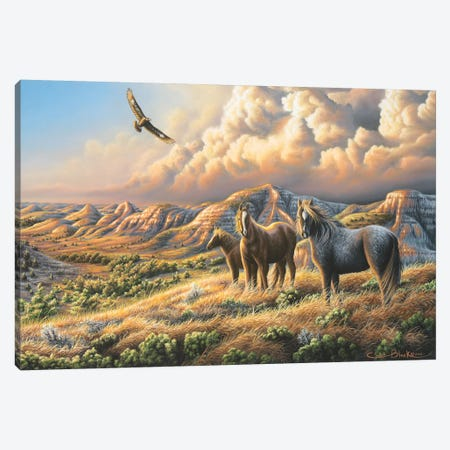 Under Wild Skies 3-Piece Canvas #CHB78} by Chuck Black Canvas Print