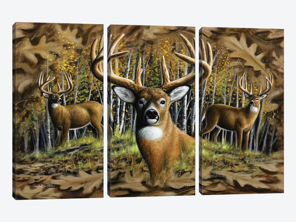 Whitetail Country by Chuck Black 3-piece Canvas Art