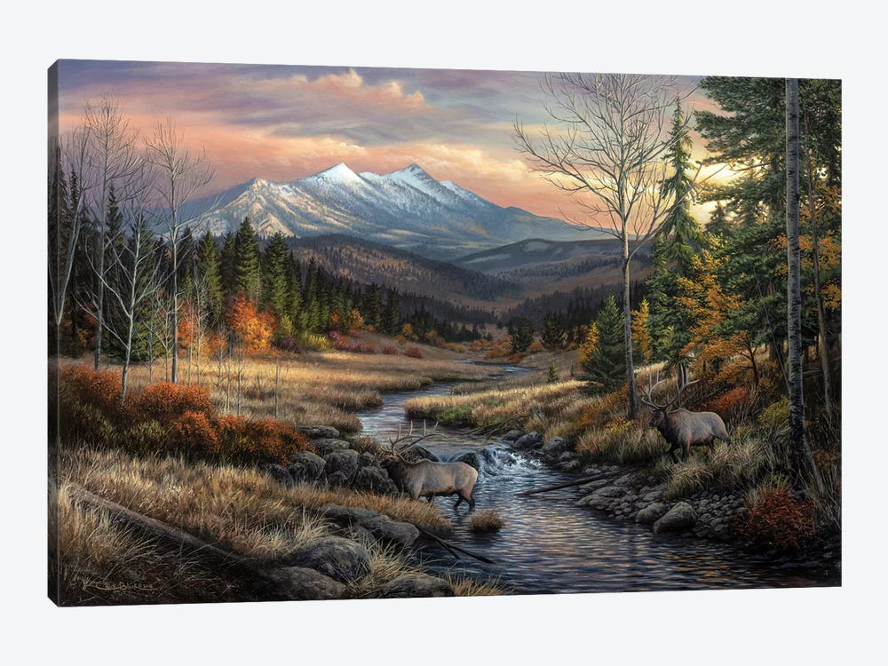 A Wanderers Dream by Chuck Black 1-piece Canvas Art Print