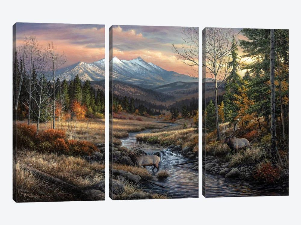 A Wanderers Dream by Chuck Black 3-piece Canvas Art Print