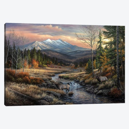 A Wanderers Dream Canvas Print #CHB88} by Chuck Black Canvas Wall Art