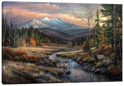 A Wanderers Dream Canvas Art Print