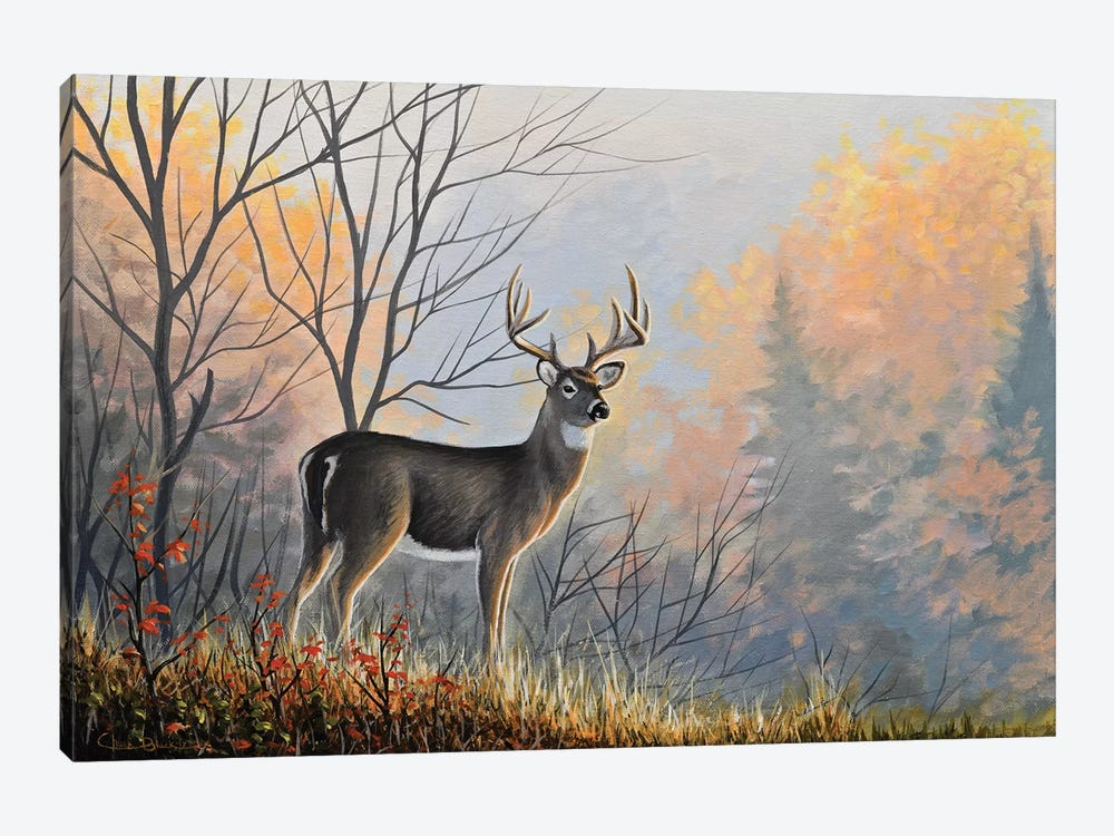 Autumn Air by Chuck Black 1-piece Canvas Wall Art