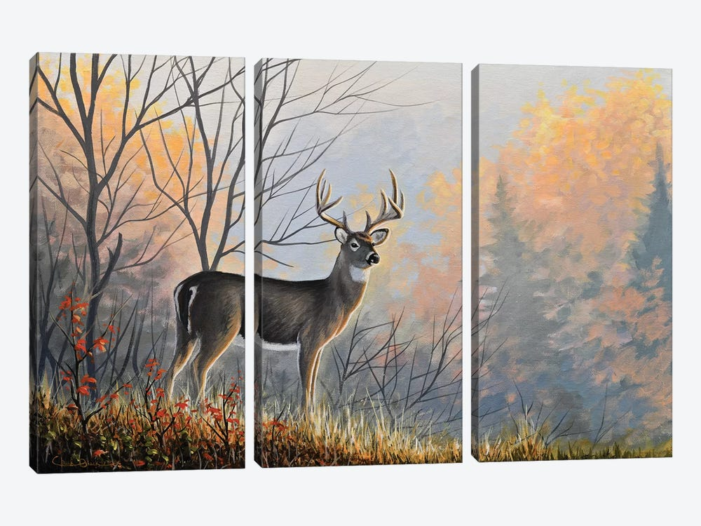 Autumn Air by Chuck Black 3-piece Canvas Artwork