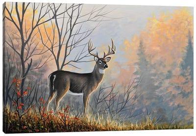 Autumn Air Canvas Art Print