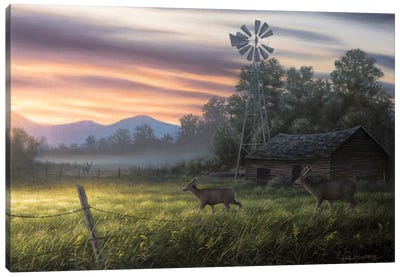 Late Summer Canvas Art Print