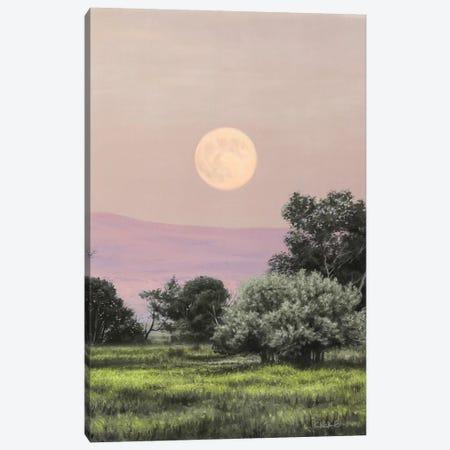 Ruby Sky Canvas Print #CHB95} by Chuck Black Canvas Art