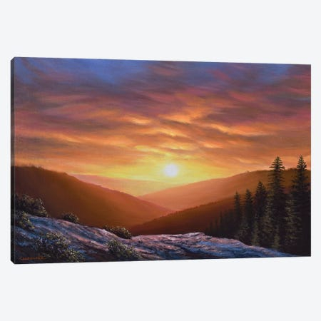 Simply Perfect Canvas Print #CHB96} by Chuck Black Canvas Wall Art