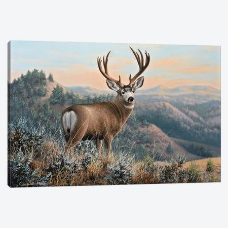 Western Monarch Canvas Print #CHB97} by Chuck Black Canvas Artwork