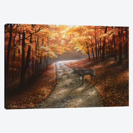 Autumn Bliss 3-Piece Canvas #CHB9} by Chuck Black Art Print