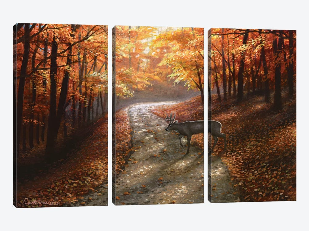 Autumn Bliss by Chuck Black 3-piece Canvas Print