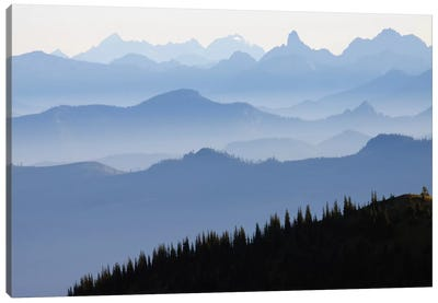 Foggy Mountain Landscape I, Cascade Range, Mount Rainier National Park, Washington, USA Canvas Art Print