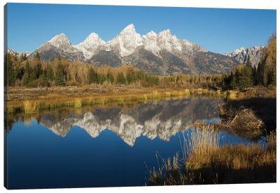 Grand Tetons Reflecting in Beaver Pond Canvas Art Print
