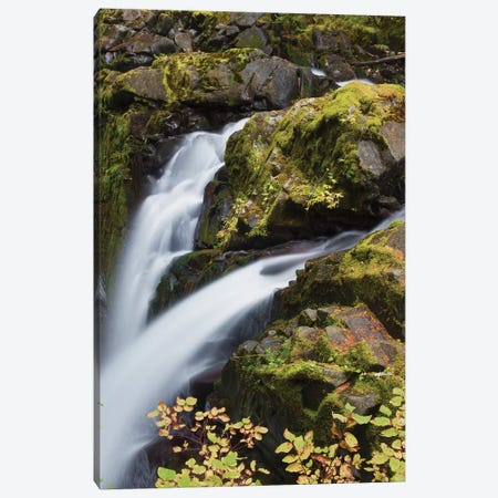 Sol Duc Falls, Olympic National Park 3-Piece Canvas #CHE27} by Ken Archer Canvas Artwork
