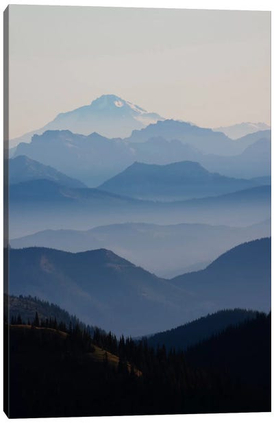 Foggy Mountain Landscape II, Cascade Range, Mount Rainier National Park, Washington, USA Canvas Art Print