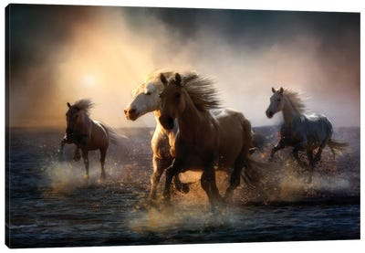 But You Can Never Take Away My Freedom... Canvas Art Print