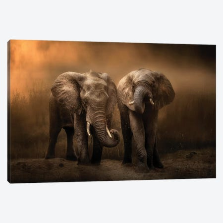 Elephants Dust Bath... Canvas Print #CHG6} by Charlaine Gerber Canvas Art Print