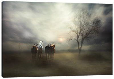 For Tomorrow May Rain, So We'Ll Follow The Sun... Canvas Art Print