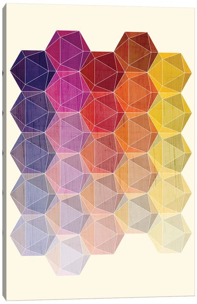 Hedron I Canvas Art Print