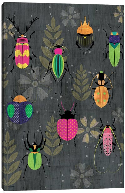 Beetles Canvas Art Print