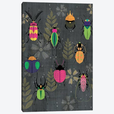 Beetles Canvas Print #CHH4} by Chhaya Shrader Canvas Art