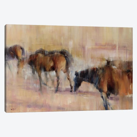 Kentucky Morning I Canvas Print #CHO1} by Valtcho Tonov Canvas Wall Art