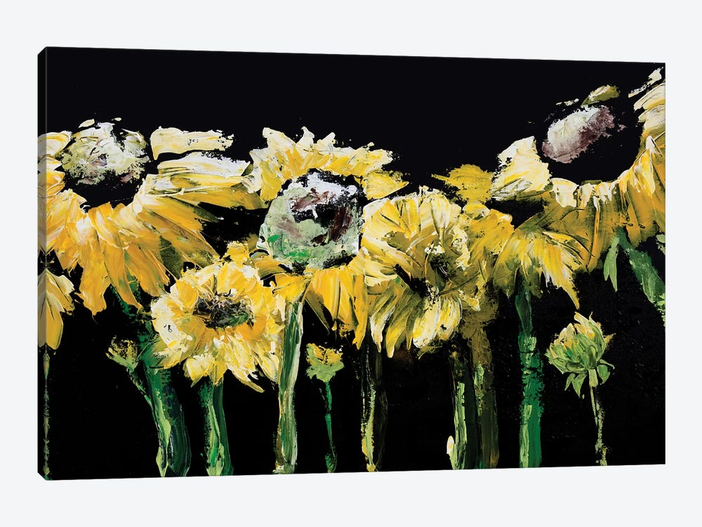Sunflower Field on Black 1-piece Canvas Art