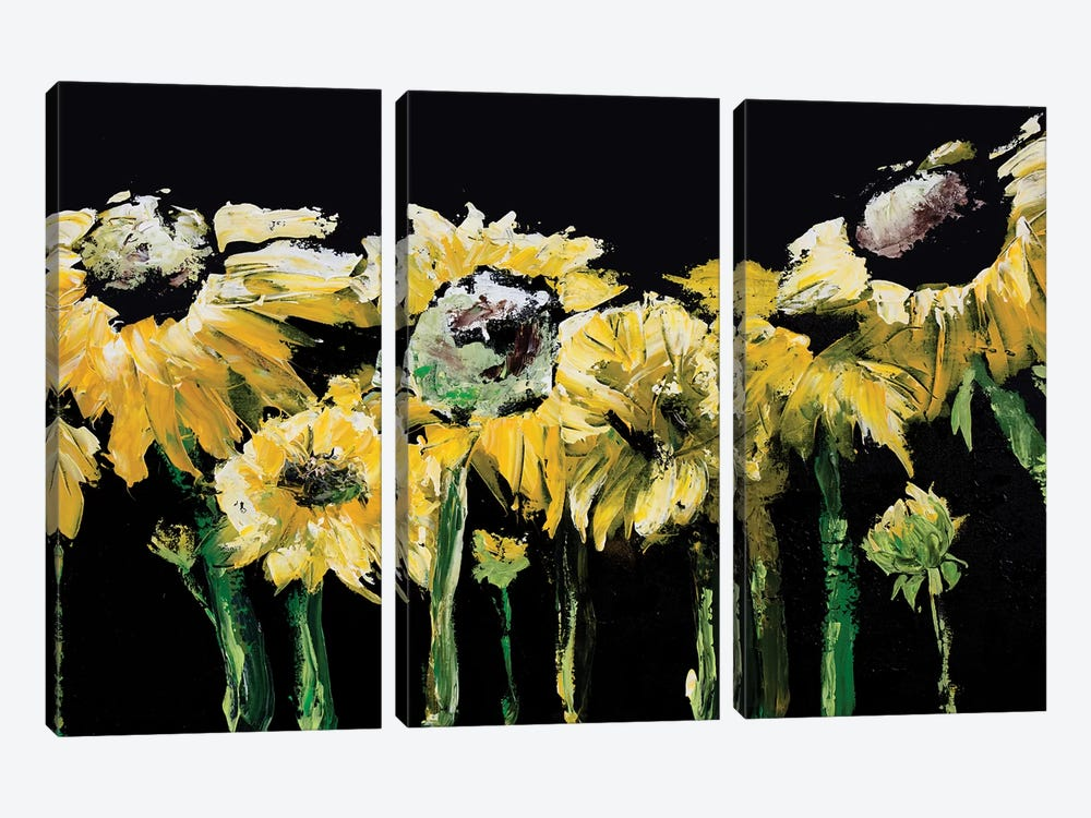 Sunflower Field on Black by Marcy Chapman 3-piece Canvas Artwork