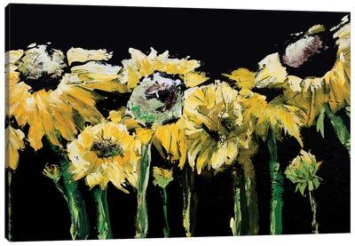 Sunflower Field on Black Canvas Art Print