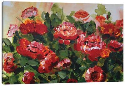 Red Poppies Garden Canvas Art Print