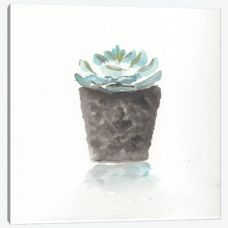 Watercolor Cactus Still Life I Canvas Print #CHP19} by Marcy Chapman Canvas Art Print