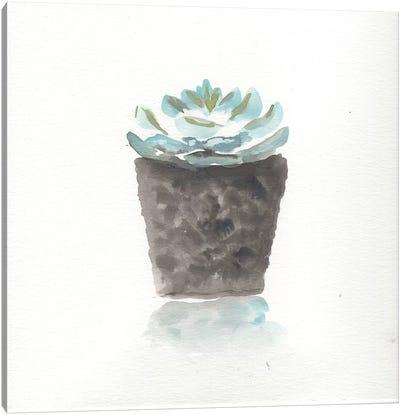 Watercolor Cactus Still Life I Canvas Art Print