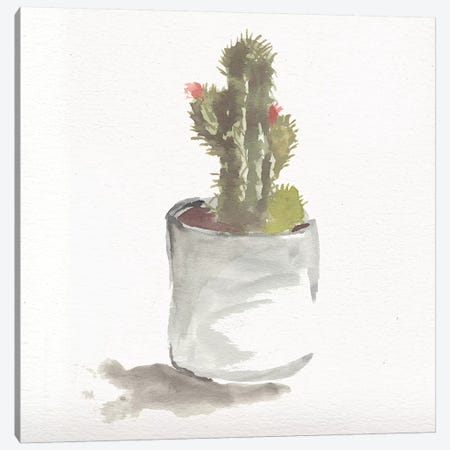 Watercolor Cactus Still Life II Canvas Print #CHP20} by Marcy Chapman Canvas Artwork