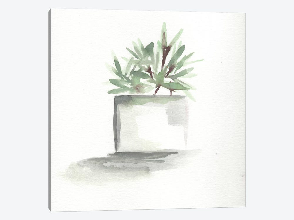 Watercolor Cactus Still Life IV by Marcy Chapman 1-piece Art Print