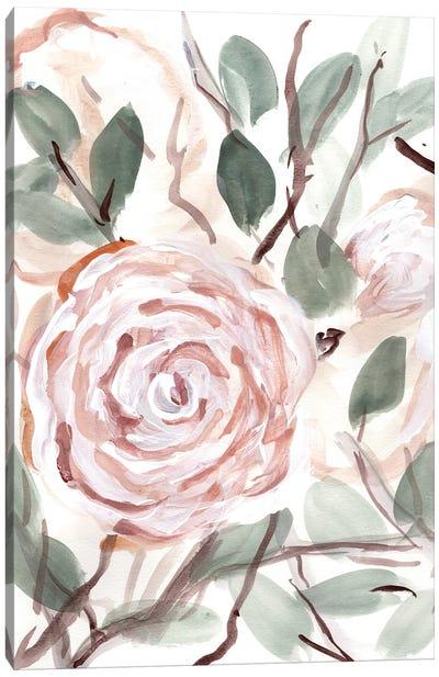 Farmhouse Bush Coral Pink II Canvas Art Print