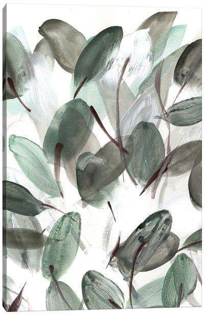 Farmhouse Leafy II Canvas Art Print