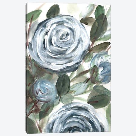 Farmhouse Rose Blue II Canvas Print #CHP35} by Marcy Chapman Canvas Artwork