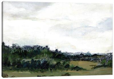 Open Skies Canvas Art Print