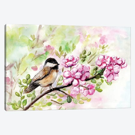 Spring Chickadee And Apple Blossoms Canvas Print #CHP45} by Marcy Chapman Canvas Art Print