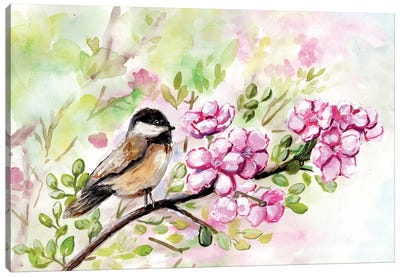 Spring Chickadee And Apple Blossoms Canvas Art Print