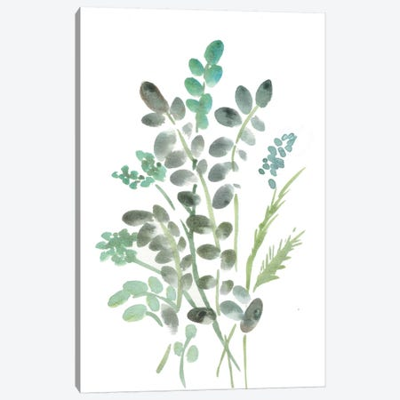 Farmhouse Botanical I Canvas Print #CHP4} by Marcy Chapman Art Print